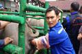 Program Kesehatan Reproduksi Sapi/Kerbau