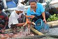 Raup Peluang Pasar Nila