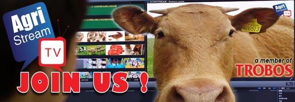 JOB OPPORTUNITY : Tenaga Kreatif Freelance Video Editor
