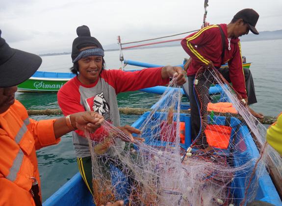 Optimalisasi Perikanan Tangkap Berkelanjutan
