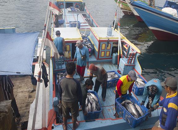 Riuh Rendah Pelabuhan Perikanan Malang